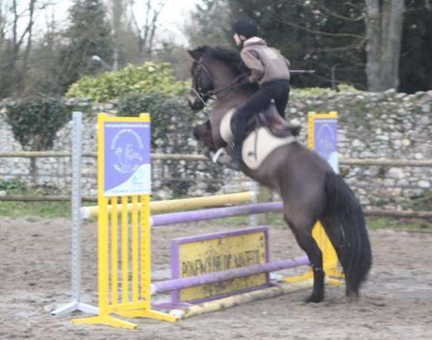 Poney club Nanteuil 3 - Copie