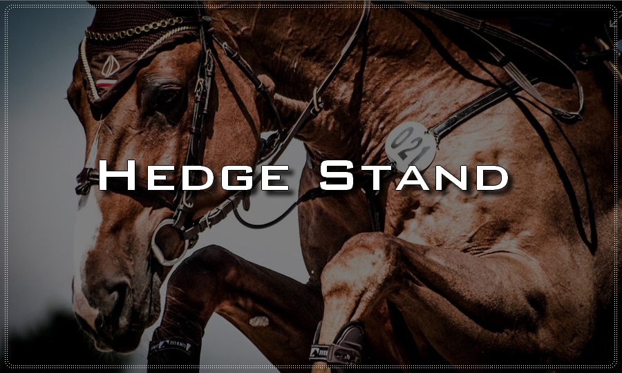 Hedge stand